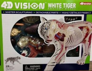 4D-Vision-White-Tiger-Anatomy-Scupture-Model-Kit-Puzzle-26091