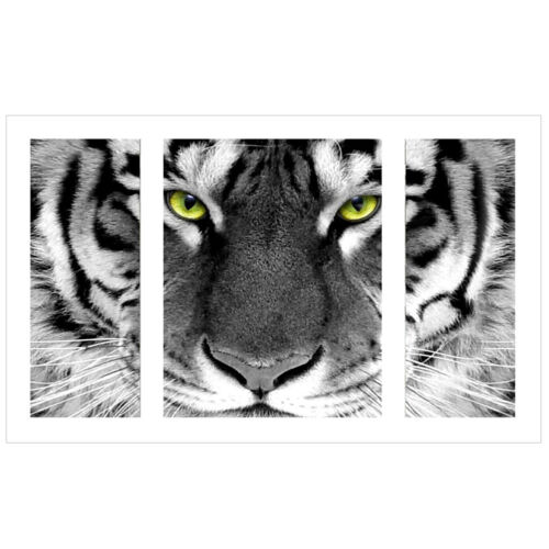Tiger 5D Diamant Diamond Painting DIY Stickerei Malerei Bilder Stickpackung
