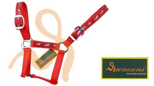 Rumani PP Horse Halter / Headstall Iron Hardware Horse Print Ribbon Decoration