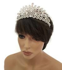 Splendido Cristallo Diamante Argento Tiara Corona Prom Testa Pezzo Floreale Abiti da sposa Prom