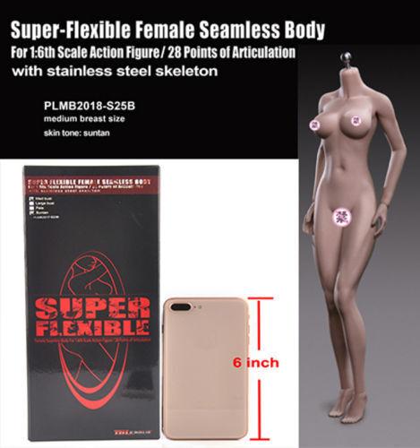 1 6 Tbleague S25B modelo de cuerpo figura femenina Bronceado Piel Esqueleto De Acero F 12  cabeza