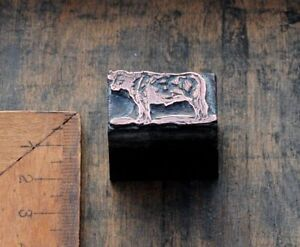 RIND-Kupferdruckstock-Galvano-Druckstock-Druckerei-Farm-Bauernhof-Ochse-Kuh