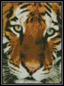 Cross Stitch Chart//Pattern//Design//XStitch Bengal Tiger /& Cub