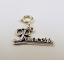 Sterling-Silver-034-Princess-034-Charm-on-Silver-Spring-Ring-For-Charm-Bracelets-0874 thumbnail 1