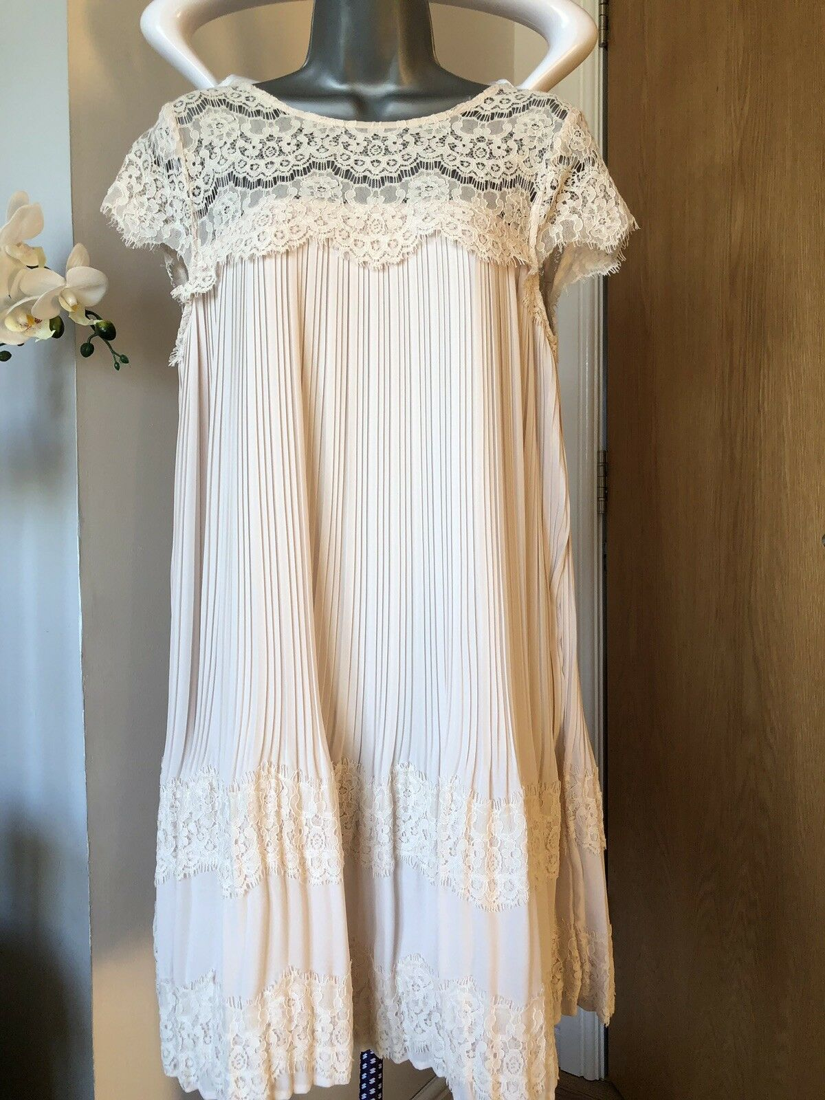 Delicate Darling Short Sleeve Lace Dress XS