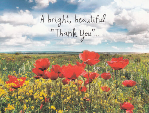 A Bright Beautiful Thank You Greeting Card White Envelope