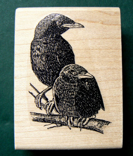 """P27 Black Crows rubber stamp 2x2.4/"""""""