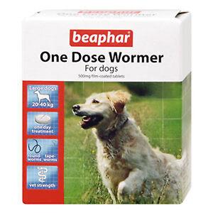 Beaphar-une-dose-vers-grand-chien-pack-de-2