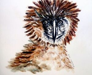 PHILIPPINE-EAGLE-BIRD-ORIGINAL-WATERCOLOR-PAINTING