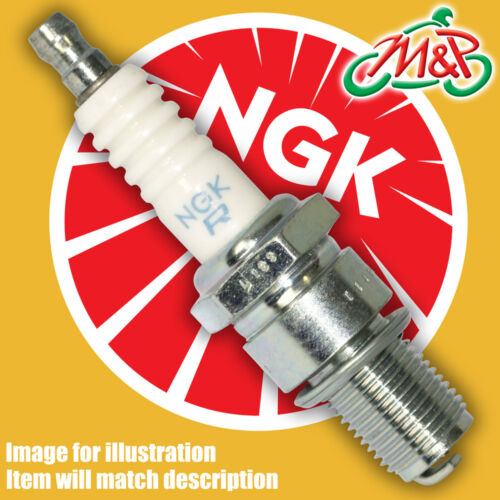 Honda CBR600F-K-L 1989 Genuine NGK Spark Plug