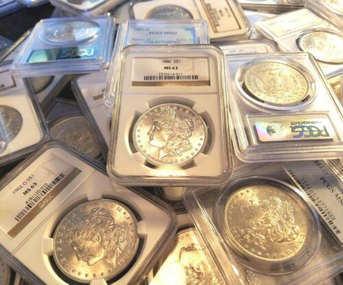 3 Different Mints P O S Morgan Dollars MS63 NGC/PCGS Certified 1878-1904