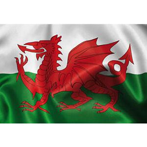 Pavillon pays de galles en tissu 90cm x 150 cm drapeau wales decoration de fetes ebay - Logo pays de galles ...