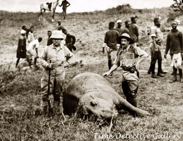 Theodore Roosevelt w/Hippopotomus Kill, Hunting Africa 1919 Historic Photo Print