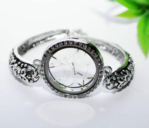 Floating Charms Medaillon Einleger Pusteblume silber Magnet VINTAGE Armband +