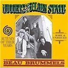 The Beau Brummels - Autumn of Their Years (2011)