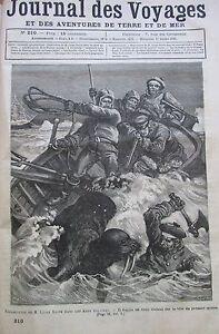 Zeitung-der-Voyages-Nr-210-von-1881-Exploration-Fleece-Leigh-Smith-Attack-Morse