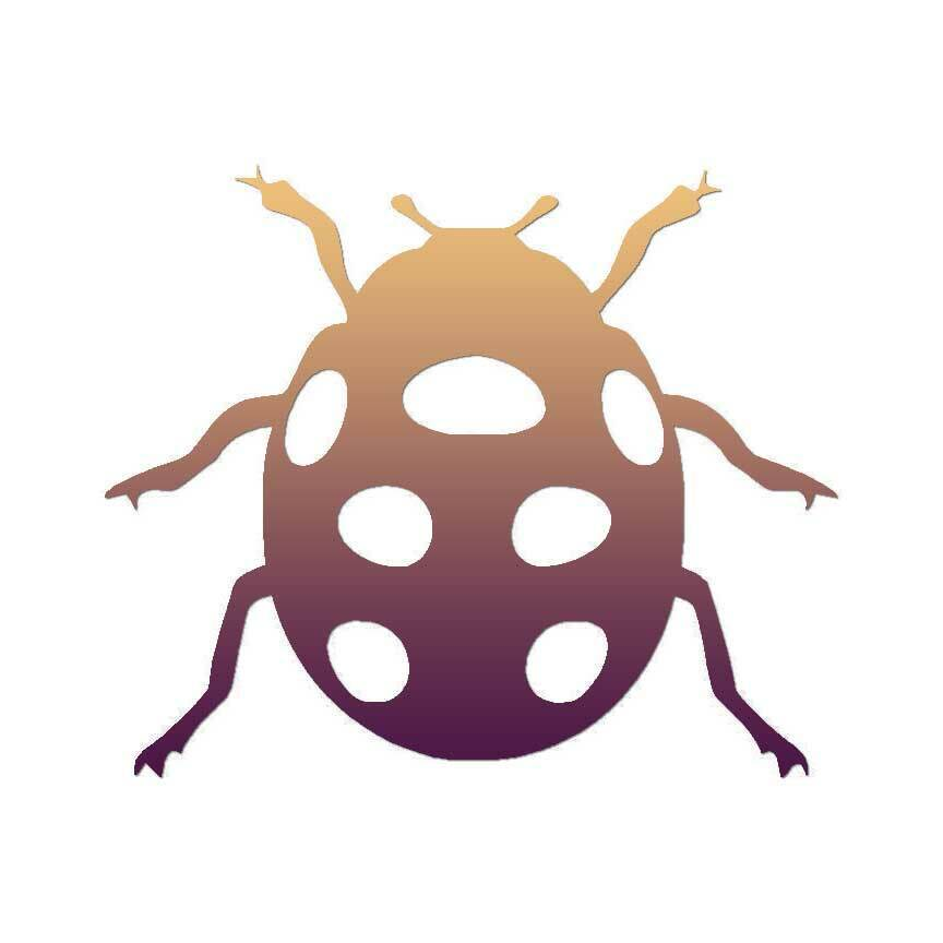 ebn428 Multiple Color /& Sizes Vinyl Decal Sticker Ladybug Cute Insect