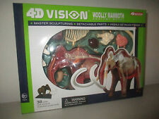 4D VISION WOLLY MAMMOTH ANATOMY MODEL 26110 4D MASTTER