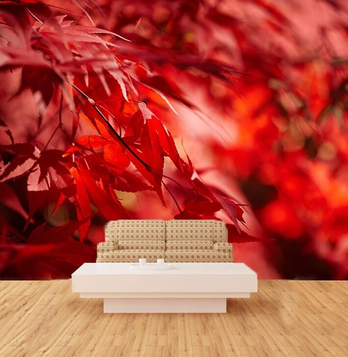 3D Red Maple Leaves 876 Wall Paper Wall Print Decal Wall Deco Wall Indoor Murals