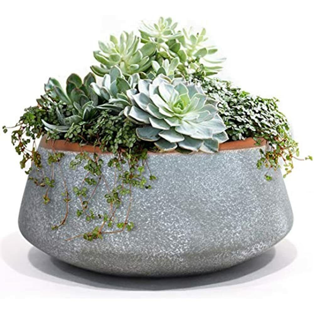 Ekirlin Ceramic Garden Pot With Tray For Succulents Cactus Indoor