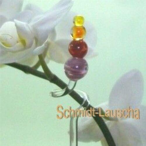 Orchideenstab Orchidées Support Balle Pyramide Orchidées Baguettes verre qualité Lauscha