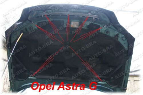 98-04 Steinschlagschutz Haubenbra Tuning BRA Opel Astra G Bj