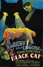 The Black Cat Boris Karloff Vintage Horror Film Movie Poster Print Picture A3