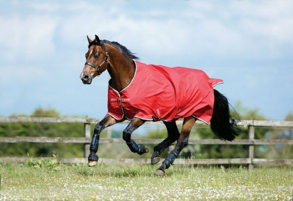 Horseware Amigo Hero 50g Regendecke ACY 900D Outdoordecke Weidedecke robust