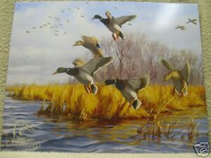 Image Is Loading Ducks Unlimited Hunting Decor Tin Metal Sign Duck