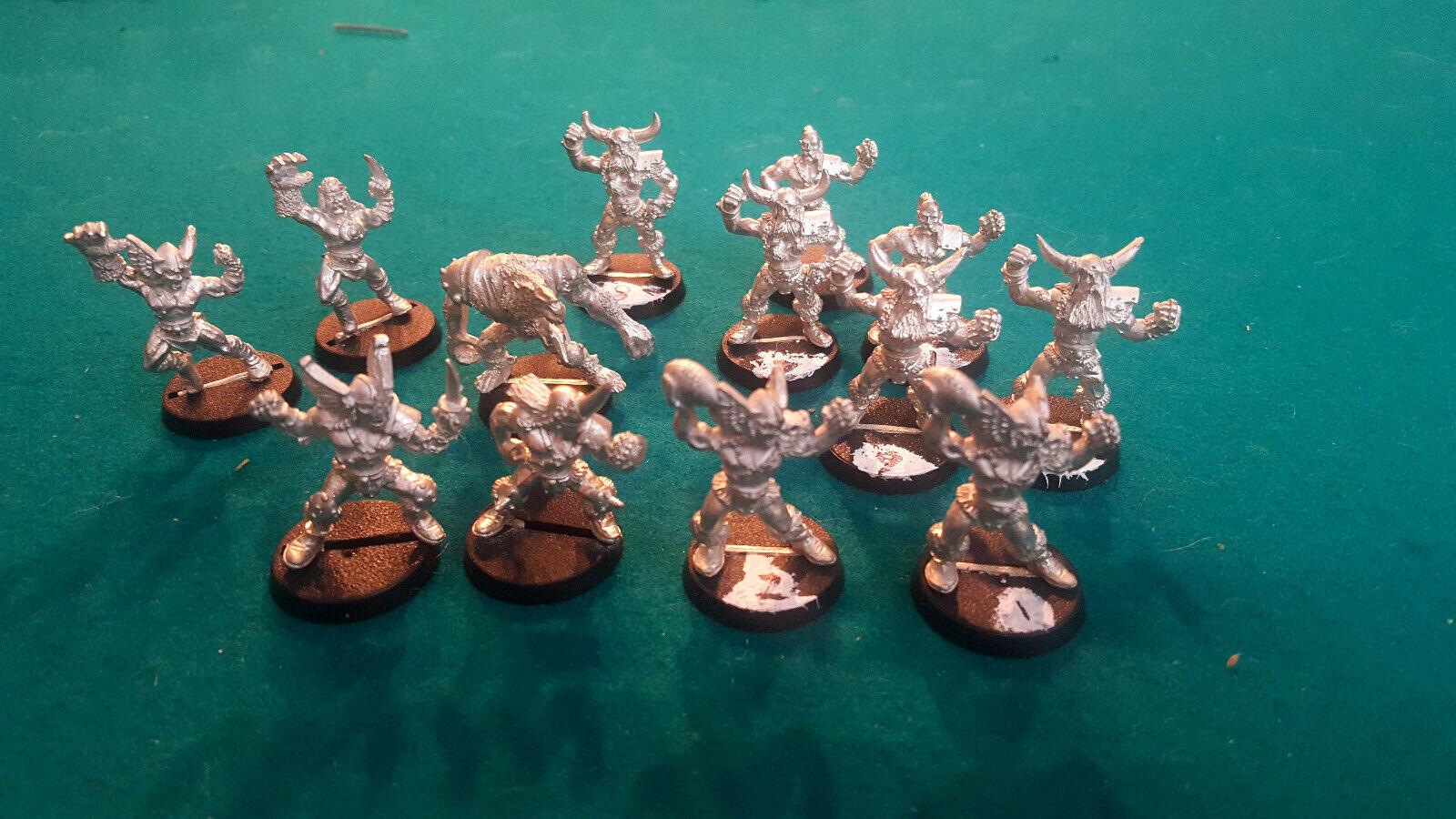Blood Bowl Norse Team Linemän, Catchers, Throwers, Blitzers, Werewold Norsca