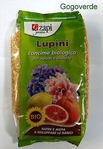Calendario Concimazione Agrumi.Dettagli Su Concime Organico Biologico Zapi Lupini Bio 1kg Agrumi Acidofile Limoni 740202