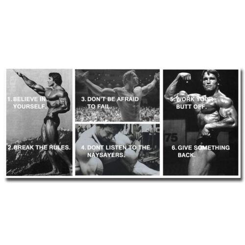 Bodybuilding Motivational Silk Poster 13x27 24x50 inch ARNOLD SCHWARZENEGGER