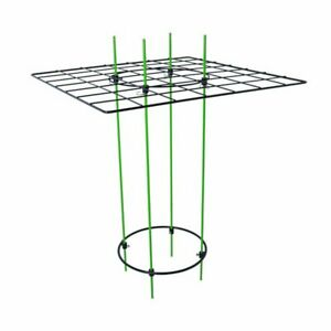 Scrog-Kit-Plants-amp-Flowers-Support-For-Hydroponics-Horticulture-19-039-039-x25-039-039