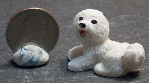 Dollhouse Miniature Pet Dog Bichon Frise Animals 1:12 scale D51 Dollys Gallery