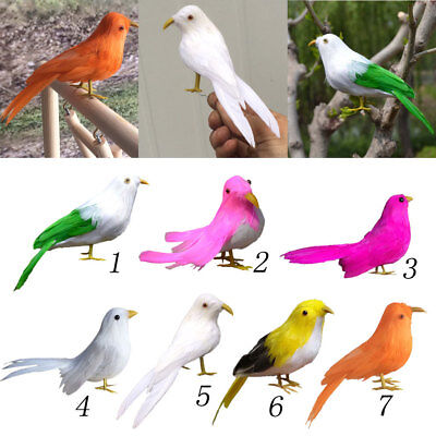 Craft Birds Fake Artificial Bird Realistic Taxidermy Home Deco Toy Gift #4