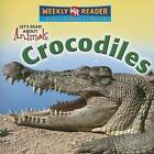 Crocodiles by Kathleen Pohl (Paperback / softback, 2007)