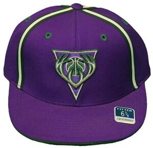 0ebbd55a2ec ... coupon for image is loading new milwaukee bucks flatbill fitted hat  embroidered cap aa3a0 698e8