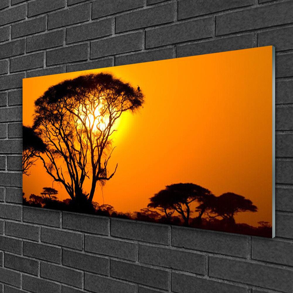 Tableau sur verre Image Impression 100x50 Nature Arbres Soleil