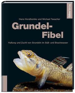 Grundel-Fibel-Haltung-und-Zucht-von-Michael-Taxacher-und-Hans-Horsthemke