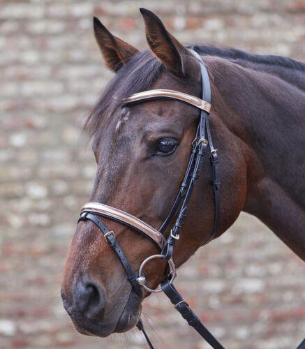 Trense STAR Trensenzaum Roségold WH 81416 Leder Pony VB WB inkl Zügel