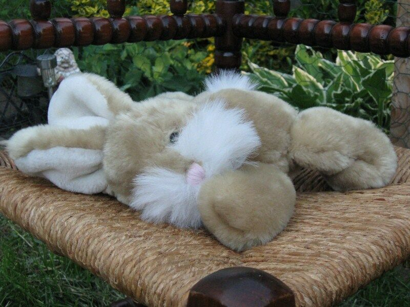 Beige Laying Bunny Rabbit Plush Evora Netherlands