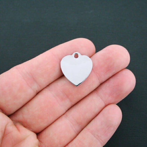 Quantity Options Nut Allergy Stainless Steel Charm BFS489