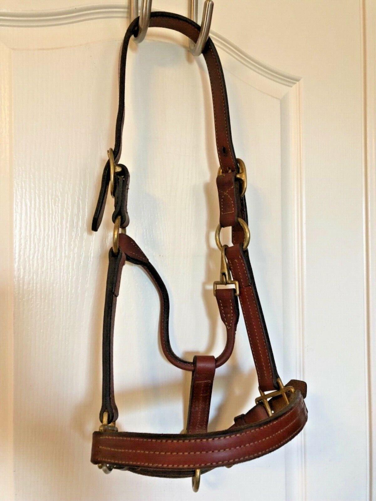 Weaver Leather Triple Puntada Pura Sangre CaBestero de pista Envío, caballo 1  XL