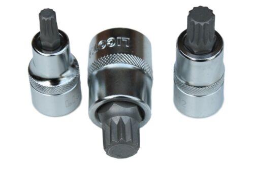 """1//2/"""" Industrie-Stecknuss-Set Spline M5 M16 auch einzeln #180906"""
