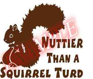 PICK-COLOR-SIZE-Vinyl-Decal-Nuttier-than-a-Squirrel-Turd-Sticker-Window-Glass