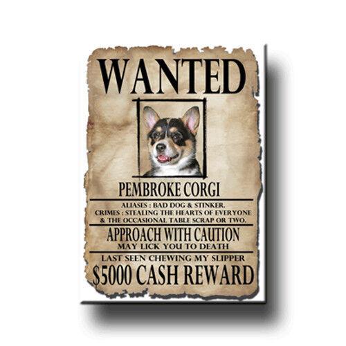 PEMBROKE CORGI Wanted Poster FRIDGE MAGNET No 2 TRI