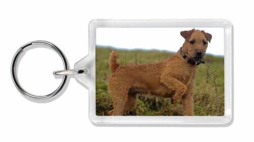 Lakeland Terrier Dog Photo Keyring Animal Gift, AD-LT1K