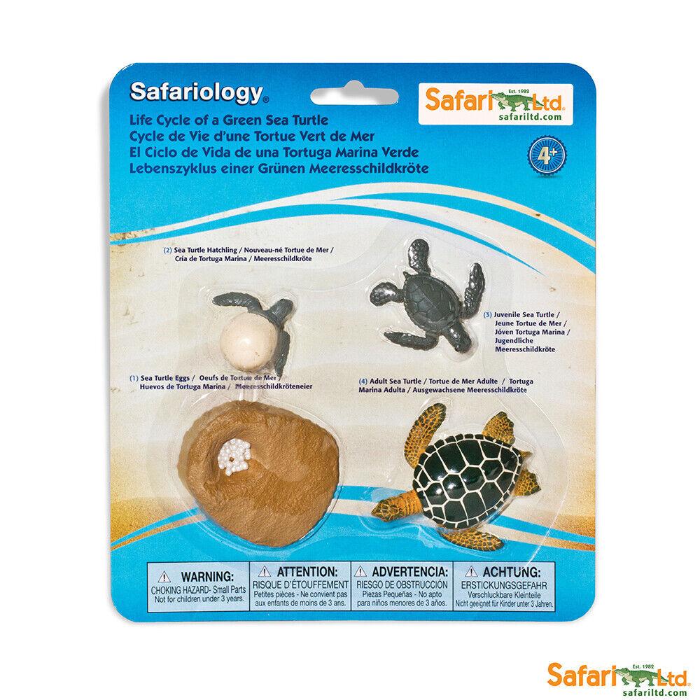 Safari Ltd Lebenszyklus Lachs oder Spinne Safari Wissenschaft Neuheiten 2020