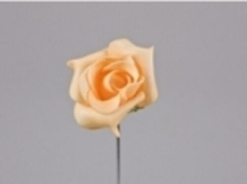différentes variantes mariage décoration de table Rose mousse Fleur Karina abricot