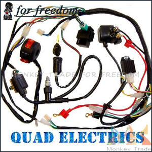 110cc ATV Quad Electric Full Set Parts Complete Electrics Wiring Harness |  eBayeBay